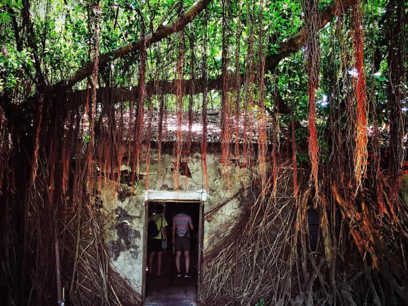 anping tree house tainan taiwan