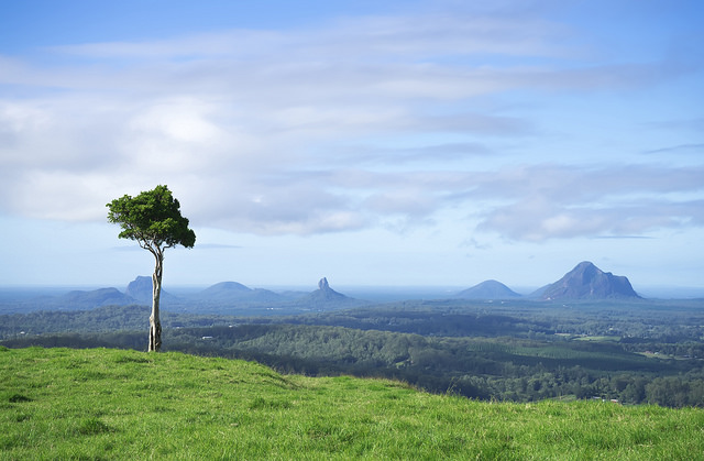 one tree hill queensland