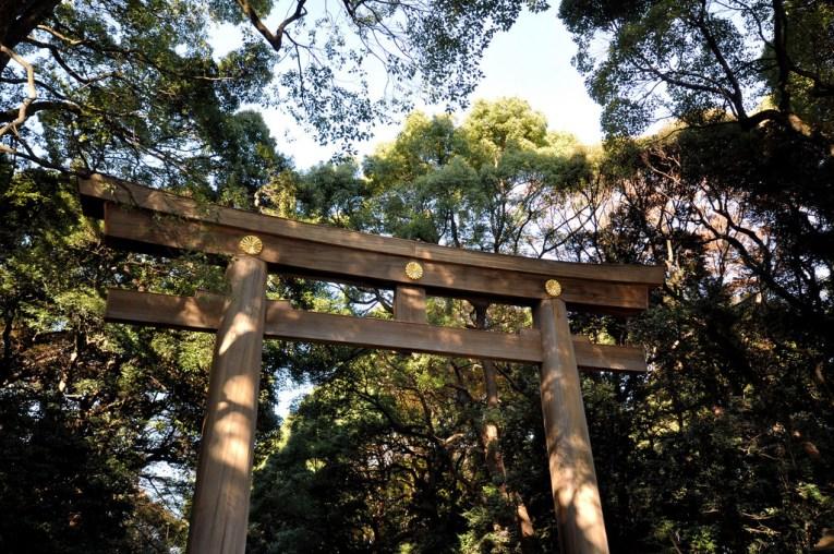 21 - Meiji Shrine