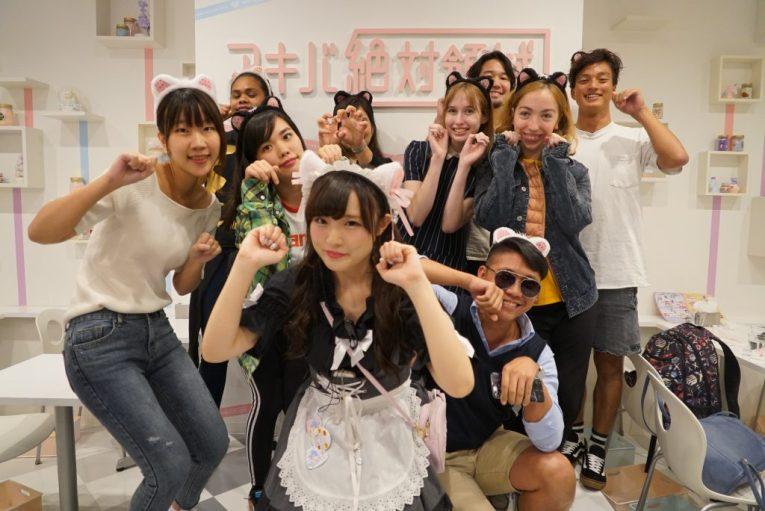 akihabara anime maid tour