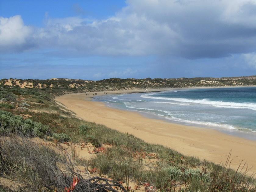 Australian Coastal Walks, Innes National Park, Pondalowie Bay to Gym Beach