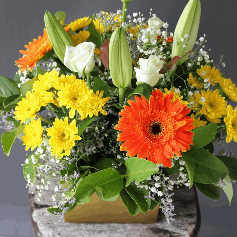 Deluxe Boxed Arrangement Aussie World Flowers Sunshine