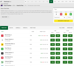 Unibet racing interface