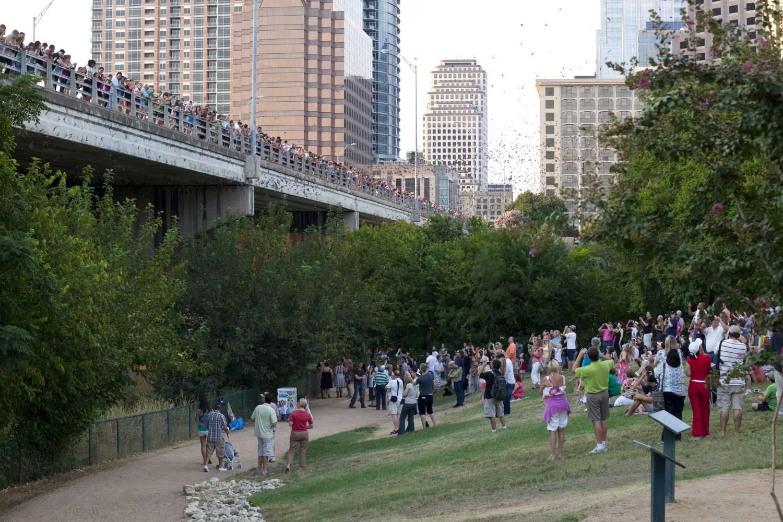 Austinites gather under the Congress Avenue Bridge for the ever popular bat exodus