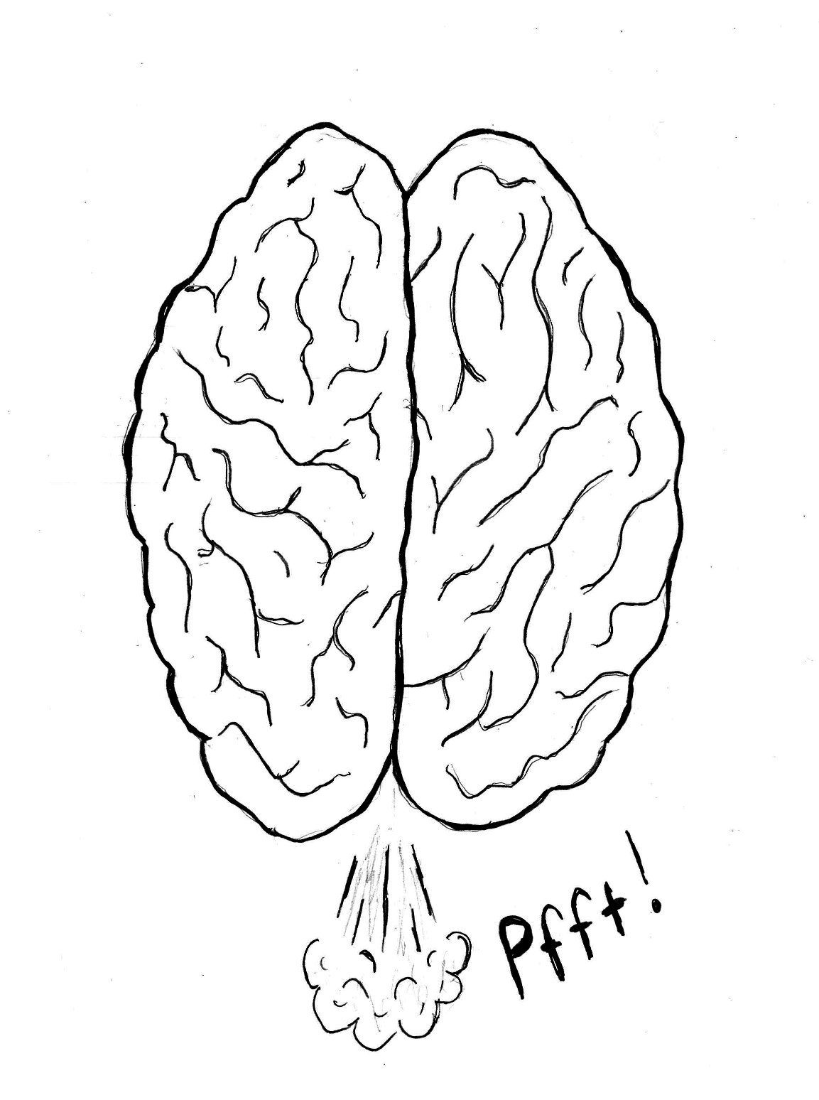 Coloring Page Brain Top View Sketch Coloring Page