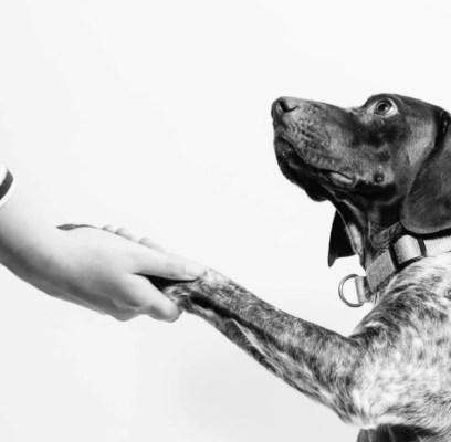 5 Keys to Building Trust