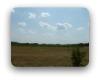 Vineyard Estates Driftwood TX Neighborhood Guide