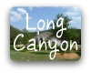 Long Canyon Austin TX Neighborhood Guide