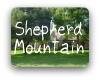 Shepherd Mountain Austin TX Neighborhood Guide