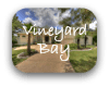 Vineyard Bay Austin TX Neighborhood Guide
