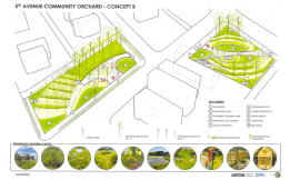 A conceptual plan of the Eco orchard. | Courtesy GPCC