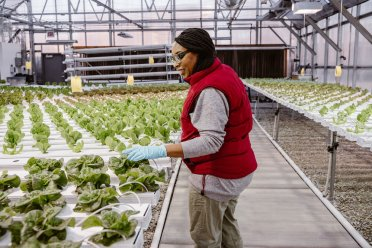 HEALTHY EATS: A community member inspects produce inside of Herban Produce. | Courtesy Herban Produce
