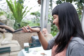 Clara Nguyen of Chicago comes face to face with a black rat snake at the Garfield Park Conservatory, Oct. 31, 2012. The snake was part of a Creatures of the Night exhibit, showcasing nocturnal animals such as snakes, bats, an owl and others.DAVID PIERINI/Staff Photographer