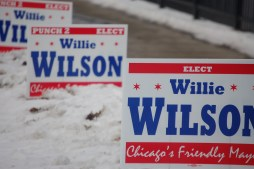 Campaign signs lined in front of a Willie Wilson press conference today, Jan. 16, in front of the Austin Town Hall building.