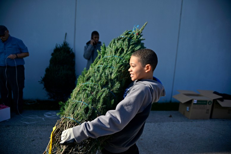 Elijah Walls, 11, TOP RIGHT, of Prospect Heights, carries a tree to a families vehicle last Saturday, during a Christmas Tree giveaway at By The Hand Club For Kids on Laramie Avenue in Austin. Walls came with members from the Church of Barrington and helped students and staff from By The Hand Club For Kids load trees, decorations. | ALEXA ROGALS/Staff Photographer