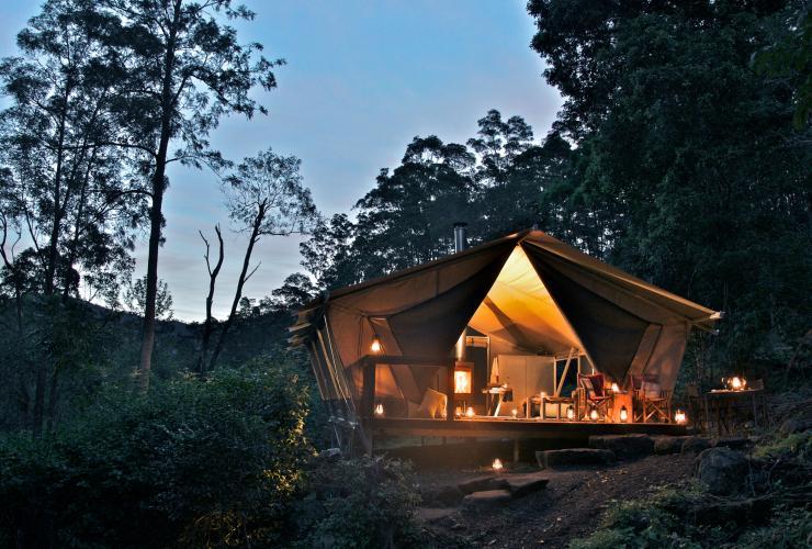 Nightfall Camp, near Lamington National Park, Gold Coast region, QLD © Nightfall Camp