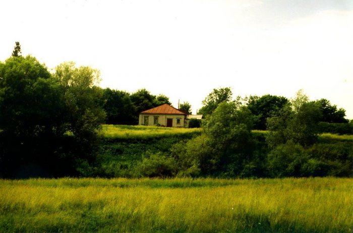 Все, что осталось от барского дома (Фото В. Проводиной, 1997)