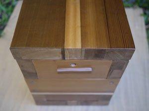 Native-bee-hive-3-