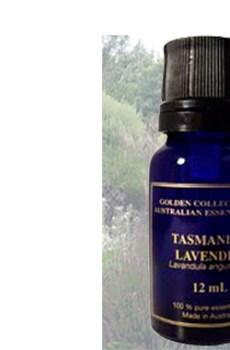 Australian Lavender essential oil