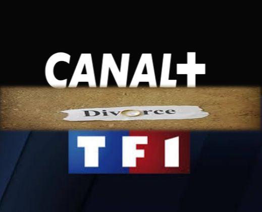 Canal+ arrête la diffusion des chaînes de TF1