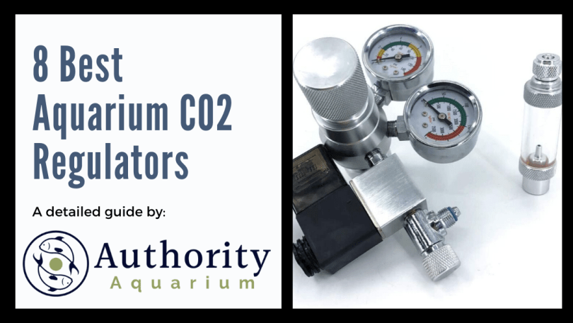 8 Best Aquarium CO2 Regulators