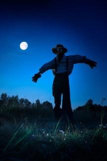 10700130 - straw man standing in an autumn field, moonlit night in halloween