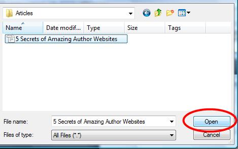 Open-File1
