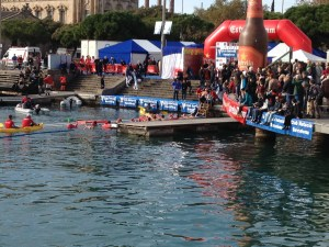 Barcelona, swim across the harbor on Xmas Day