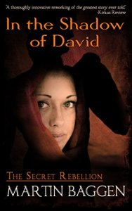 Cover of In the Shadow of David by Martin Baggen
