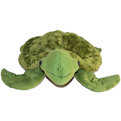 Sid the Sensory Turtle