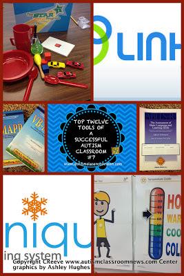 Top Twelve Tools of a Successful Autism Classroom #7