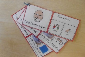 emotion response visual support asd teacher