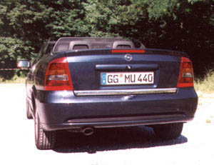 astracabrio-10.jpg (40460 Byte)