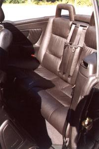 astracabrio-12.jpg (30916 Byte)