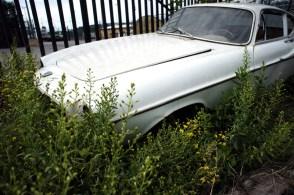 44 Volvo P1800 abandonnée