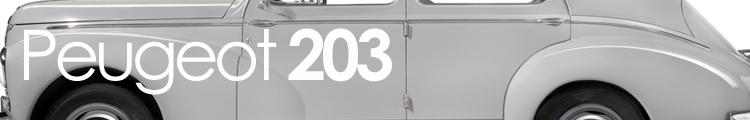 203 banner