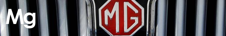 mg banner