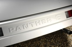 Panther 6 badge