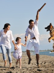 safe vacation for pets