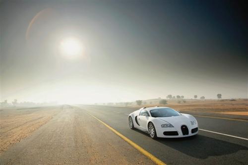 bugatti-veyron-white_9