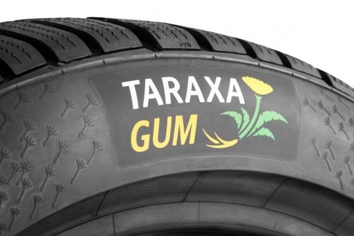 19_Taraxagum_Tire-800x534