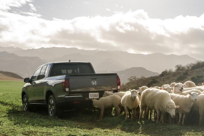 Innovative 2017 Honda Ridgeline Pickup Leads the Flock in New Super Bowl Commercial