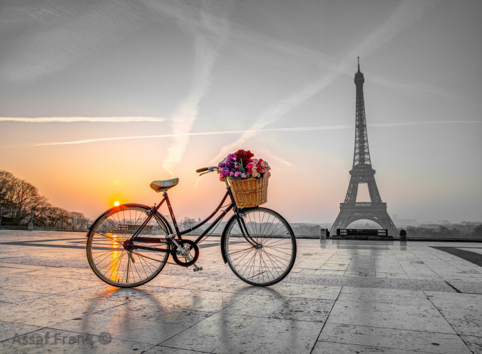 Bicycle with a basket of flowers next to the Eiffel tower