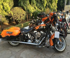 Harley Davidson Motorcycles on 3rd HOG rally