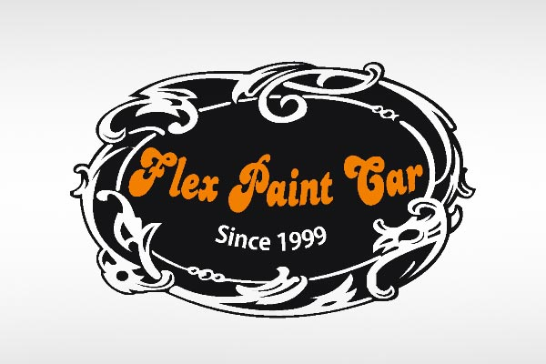 Flex Paint Car