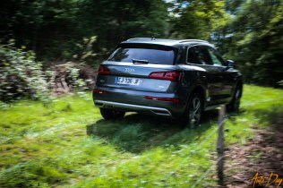 Roadtrip Audi Q5-3