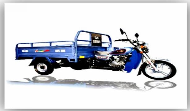 Fulu Cargo Scooter (110ZH-2)