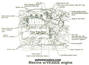 NISSAN  Ubicacion de Sensores y Componentes  LIGHT TRUCKS  SUVS  VANS 19912002  Mecanica