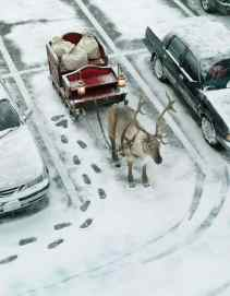 Trenó tradicional com uma rena, parado em um estacionamento entre dois carros (foto: Pinterest)