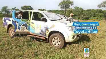 Projeto Arara Azul Toyota 04